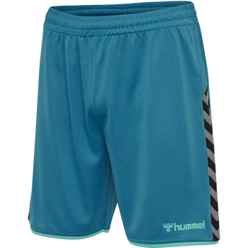 hmlAUTHENTIC POLY SHORTS, CELESTIAL, packshot