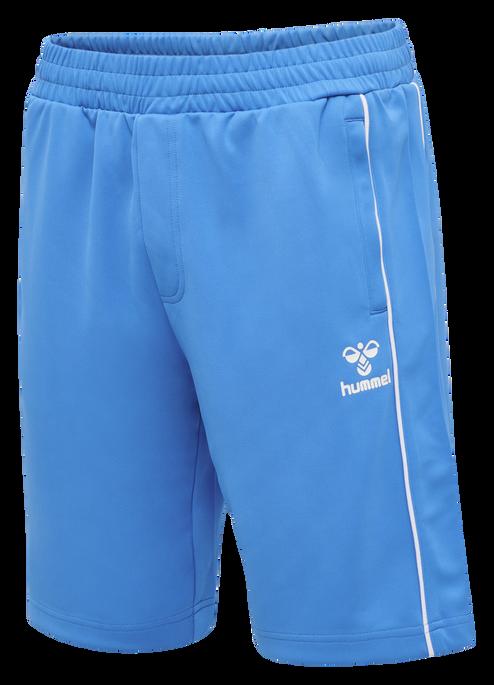 hmlARNE SHORTS, BLUE ASTER, packshot