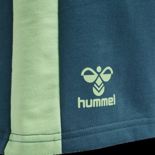 hmlACTION COTTON SHORTS WOMAN, BLUE CORAL/GREEN ASH, packshot