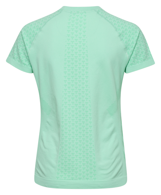 hmlCI SEAMLESS T-SHIRT S/S, ICE GREEN MELANGE, packshot