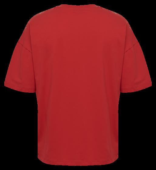 hmlINSIDE REEF LOOSE T-SHIRT S/S, TRUE RED, packshot