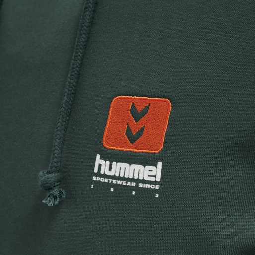 hmlLGC GRAHAM HOODIE, DARKEST SPRUCE, packshot