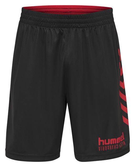 hmlWILLY MORTENSEN SHORTS, BLACK, packshot